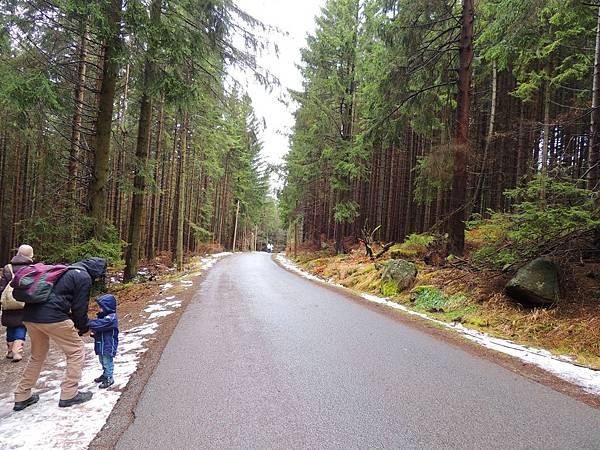 Harz_21.JPG