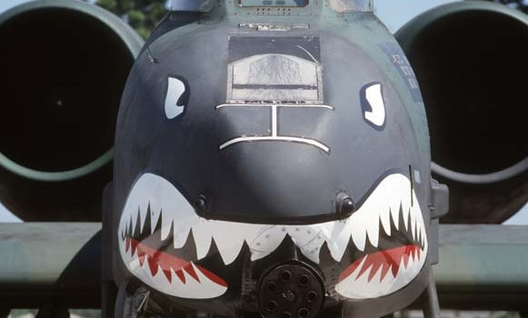 1477393-a_10_thunderbolt_ii_shark_face-581x350