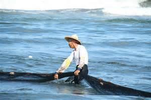 台灣漁業1