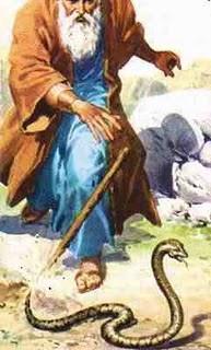 Moses Snake Rod.jpg