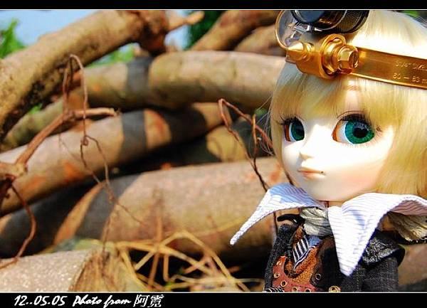 波蘿麵包1