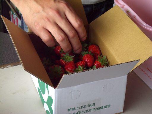 紙盒草莓.jpg