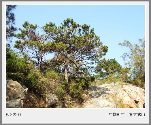 DSCF1901-1.jpg