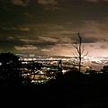 繁華的夜都市~