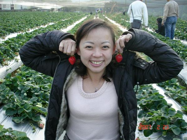看我的草莓耳環