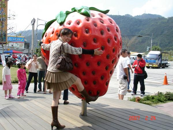 錯錯錯~~大草莓是我的啦!!!
