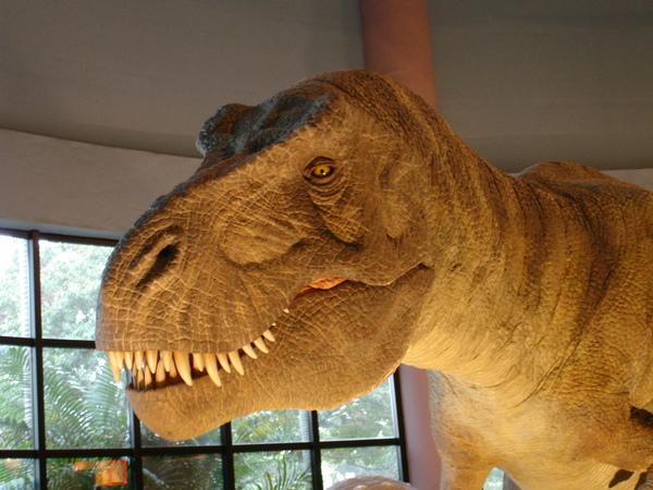 去看恐龍館!!!