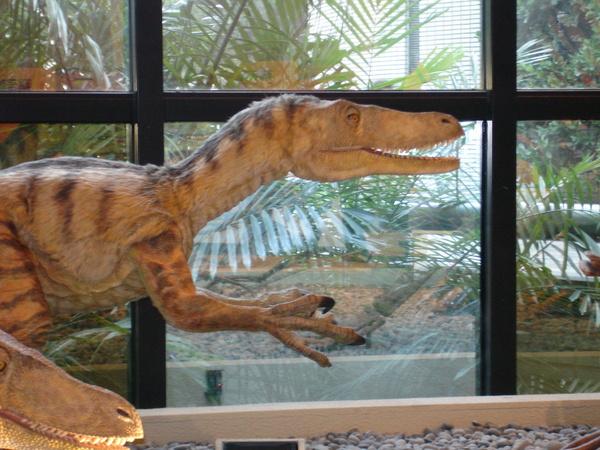 恐龍做的好像真的喔~~