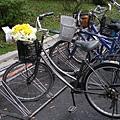 腳踏車上也有一束花