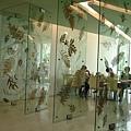 用葉子標本佈置而成的玻璃門