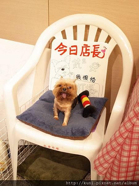 GR2 02062016 歪頭廚房 (3).JPG