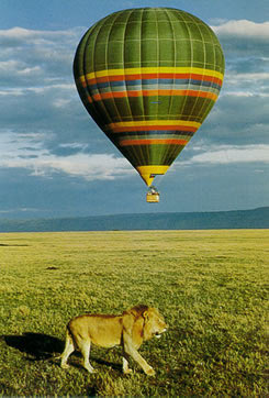 balloon_safari-2.jpg