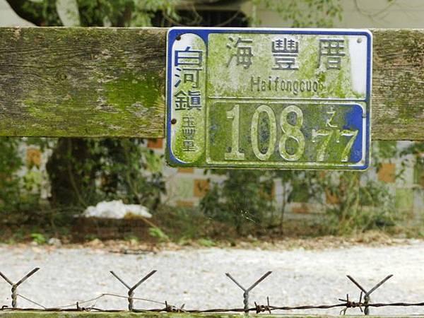 DSCN8994.JPG-1