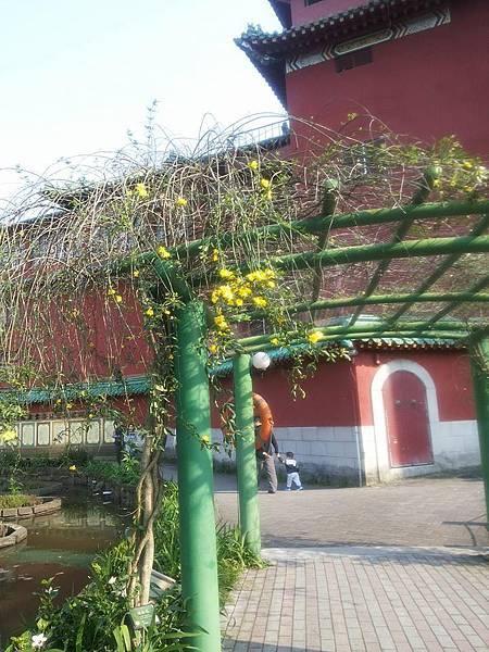 植物園64.jpg