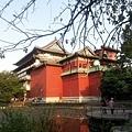 植物園65.jpg