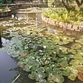 植物園70.jpg