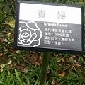 玫瑰58.jpg