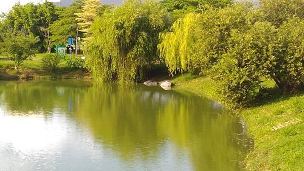 八卦休閒公園23