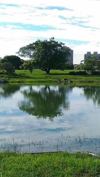 八卦休閒公園7