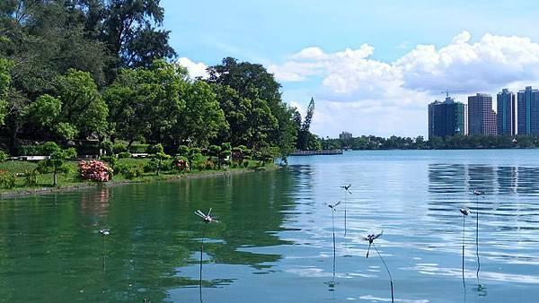 澄清湖34