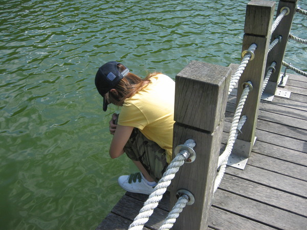 我要跳湖了...梅花湖