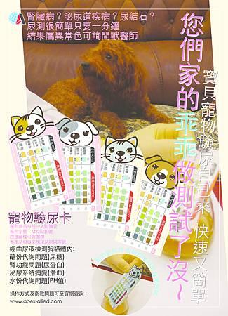 中文廣告文宣