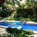 這是隔壁villa的泳池
