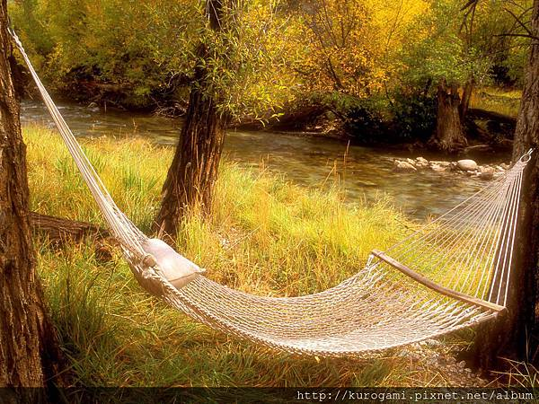 peaceful-hammock-near-stream-colorado