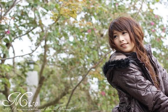 miso8.jpg
