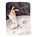 20161002月亮上的兔子.jpg