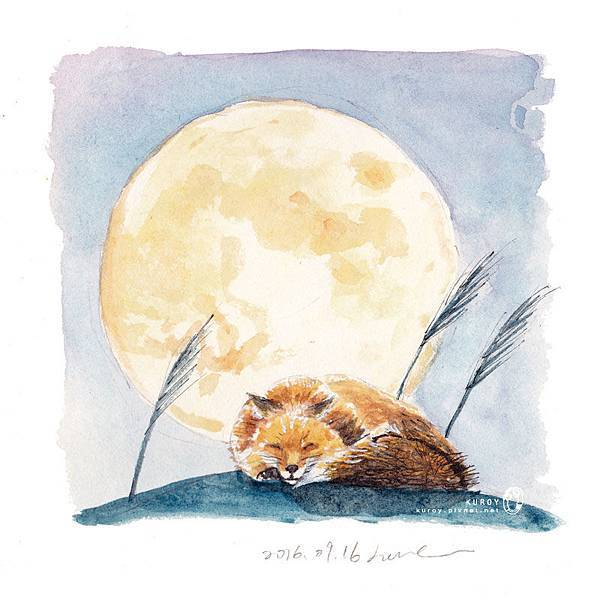 20160916月亮與睡著的狐狸.jpg