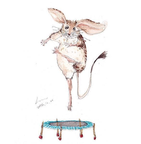 20161221玩跳床的跳鼠.jpg