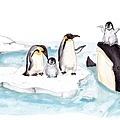 20161213企鵝家族ㄧ員的虎鯨.jpg