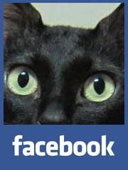 黑貓老師Kurt fb