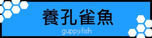 孔雀魚.jpg