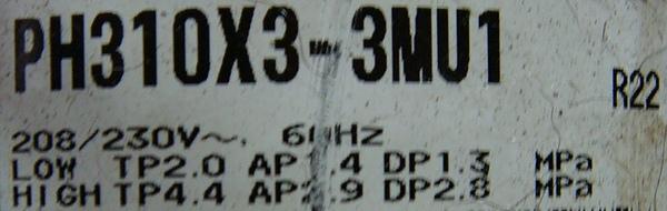 PH310.JPG