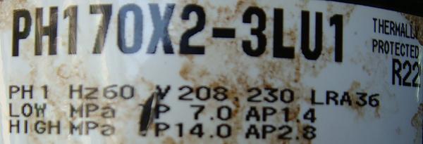 PH170.JPG