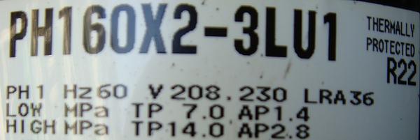 PH160.JPG