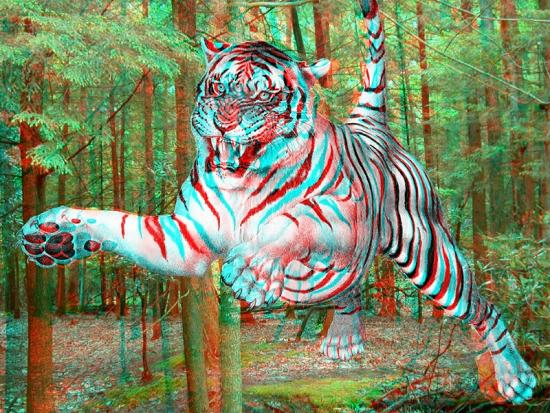 Tiger-large.jpg