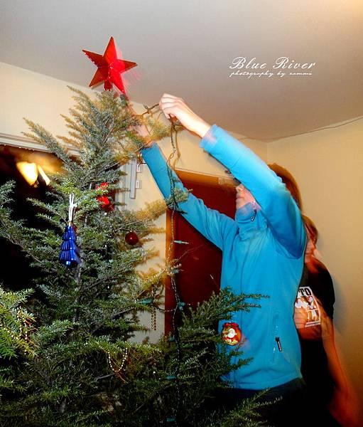 christmas-tree16.jpg