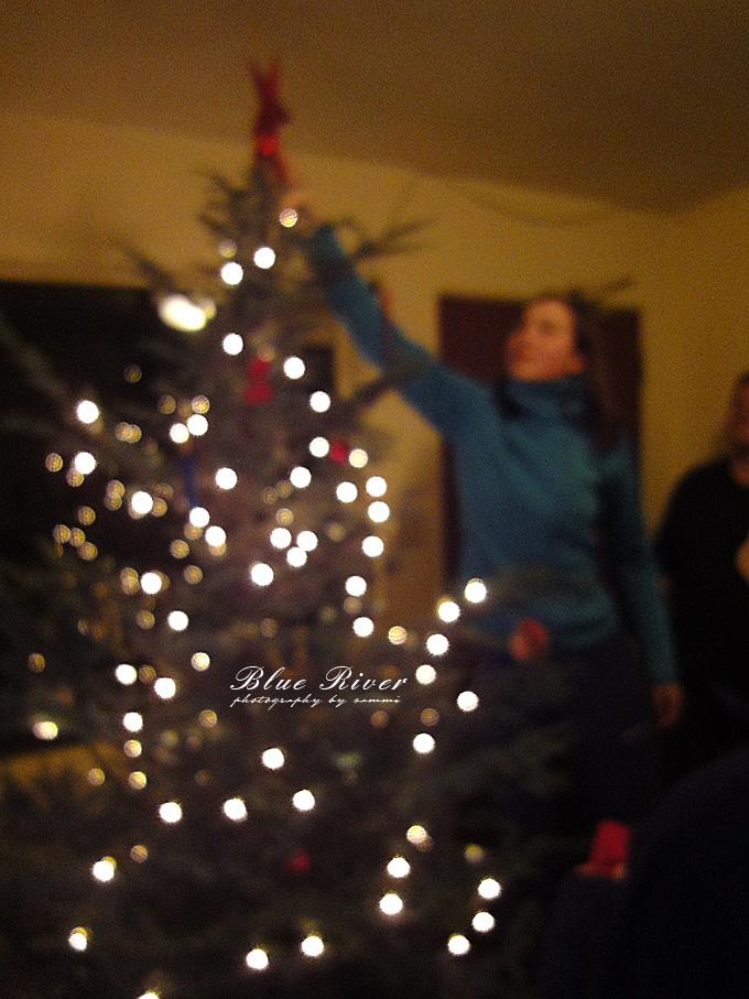 christmas-tree18.jpg