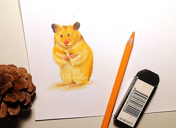 drawing1017