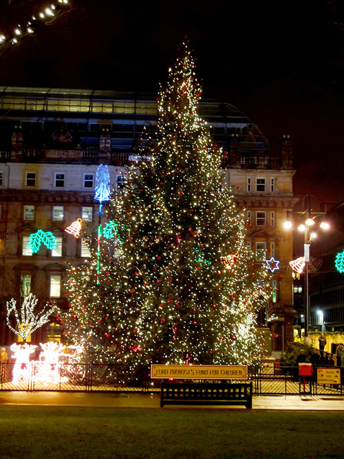 1聖誕樹.jpg