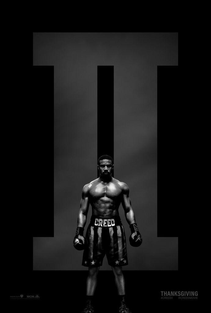 金牌拳手2:父仇