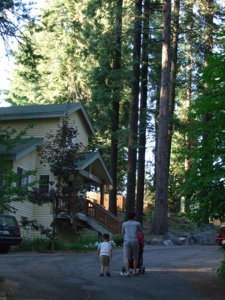 小木屋周圍一景2