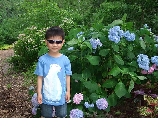 找到最喜歡的顏色的花了耶!