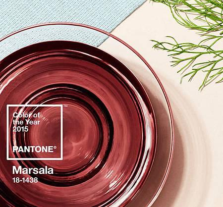 PANTONE 2015 年度代表色 瑪薩拉酒紅 Marsala