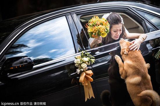 全球最佳婚禮照片