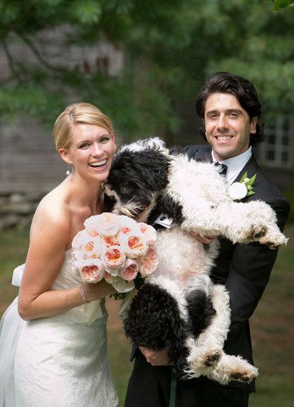 婚紗照中的另類可愛焦點 寵物入鏡婚紗照