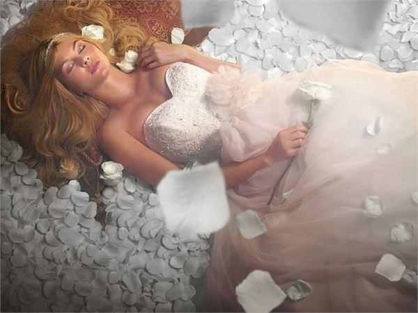 2015 Alfred Angelo 迪士尼童話公主婚紗禮服系列-sleeping beauty
